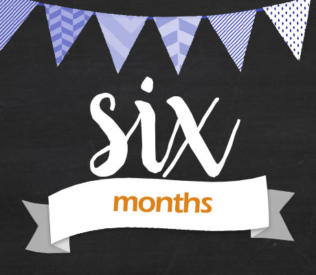 Announcement for 6 Months