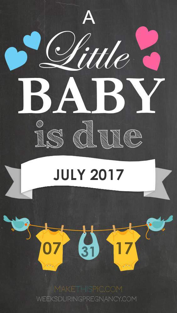 Due Date July - 2017 july 31