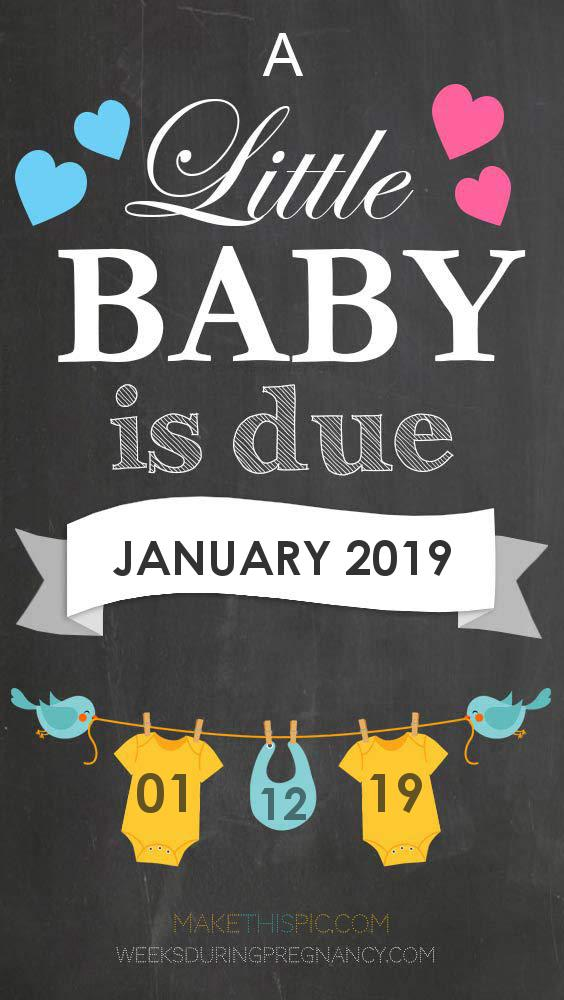Baby Calendar For January 2019 Due Date: January 12, 2019 | During Pregnancy