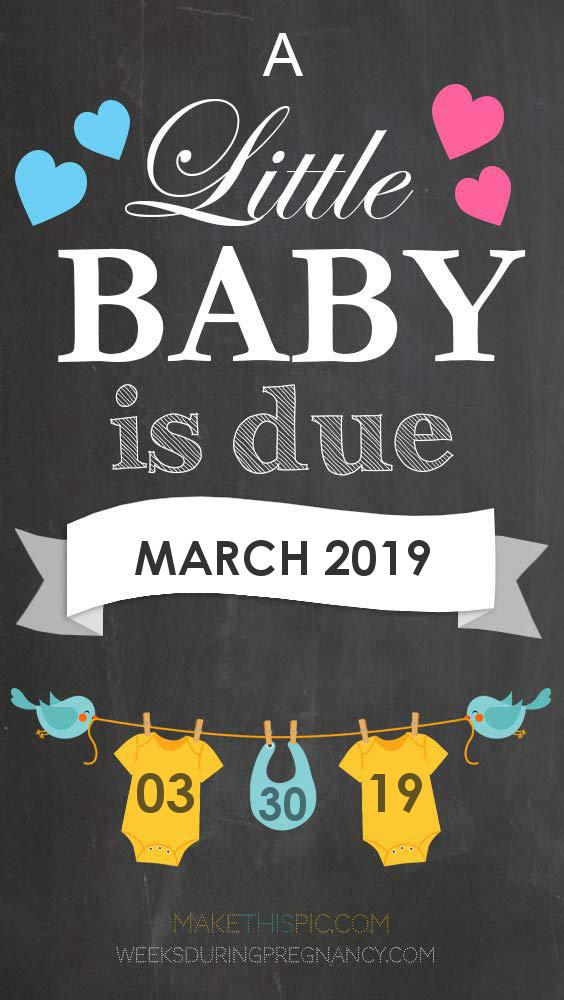 Due Date: March 30, 2019 | During Pregnancy