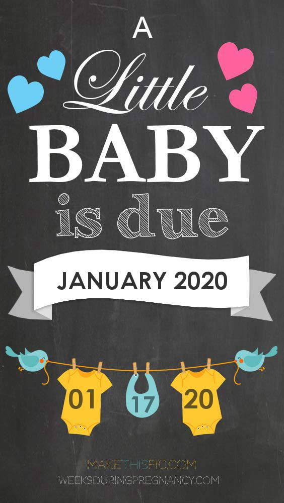 Due Date: January 17 - Announcement Image