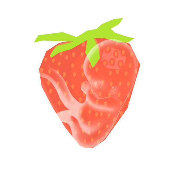 Size of baby: Strawberry